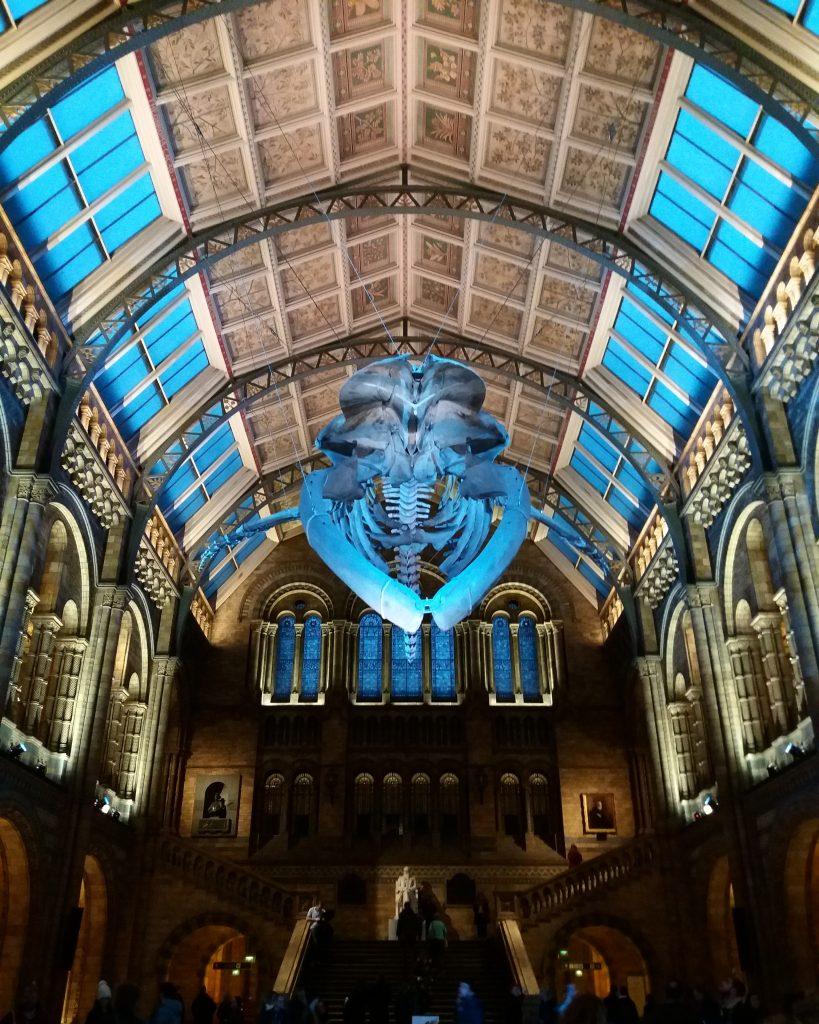 Museo de Ciencias Naturales de Londres