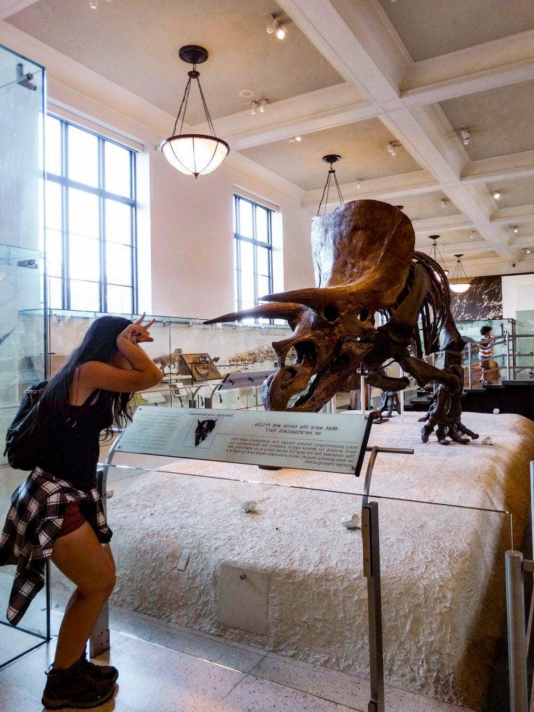Sala de Dinosaurios Ornitisquios