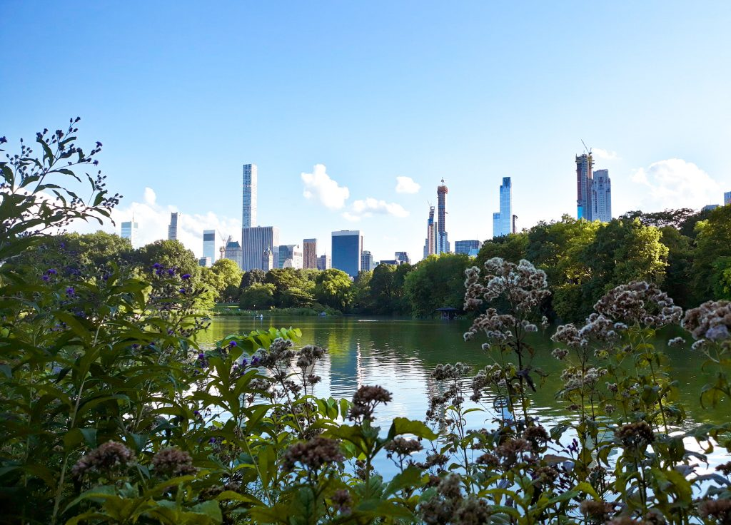 Skyline desde Central Park