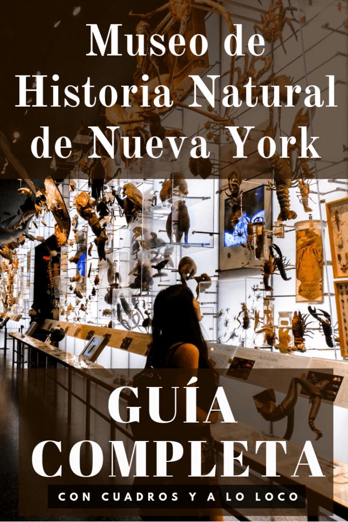 Pin para Pinterest sobre el Museo Americano de Historia Natural de Nueva York de Con cuadros y a lo loco.