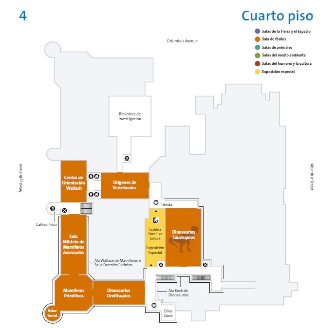 Plano del cuarto piso del museo americano de historia natural de Nueva York.