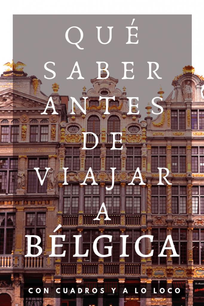 Pin de Pinterest sobre Qué saber antes de viajar a Bélgica de Con cuadros y a lo loco