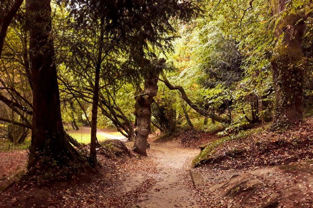 bosque del amor que ver en Josselin Vannes y Rohefort-en-Terre