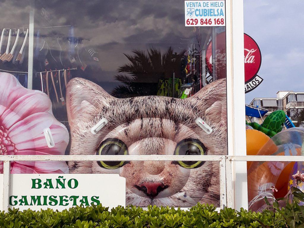 Flotador de gato Gandía