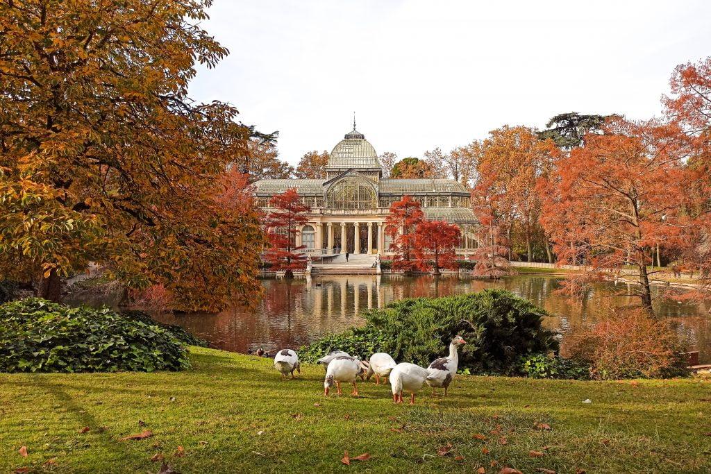 Palacio de Cristal El Retiro que ver